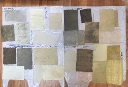 artichoke dye results